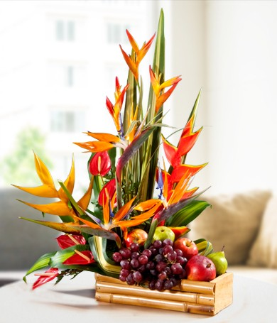 Exotic Flowers & Fruits